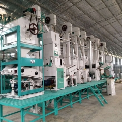Guangxi CTNM30 complete set of rice processing equipment installation and debugging site