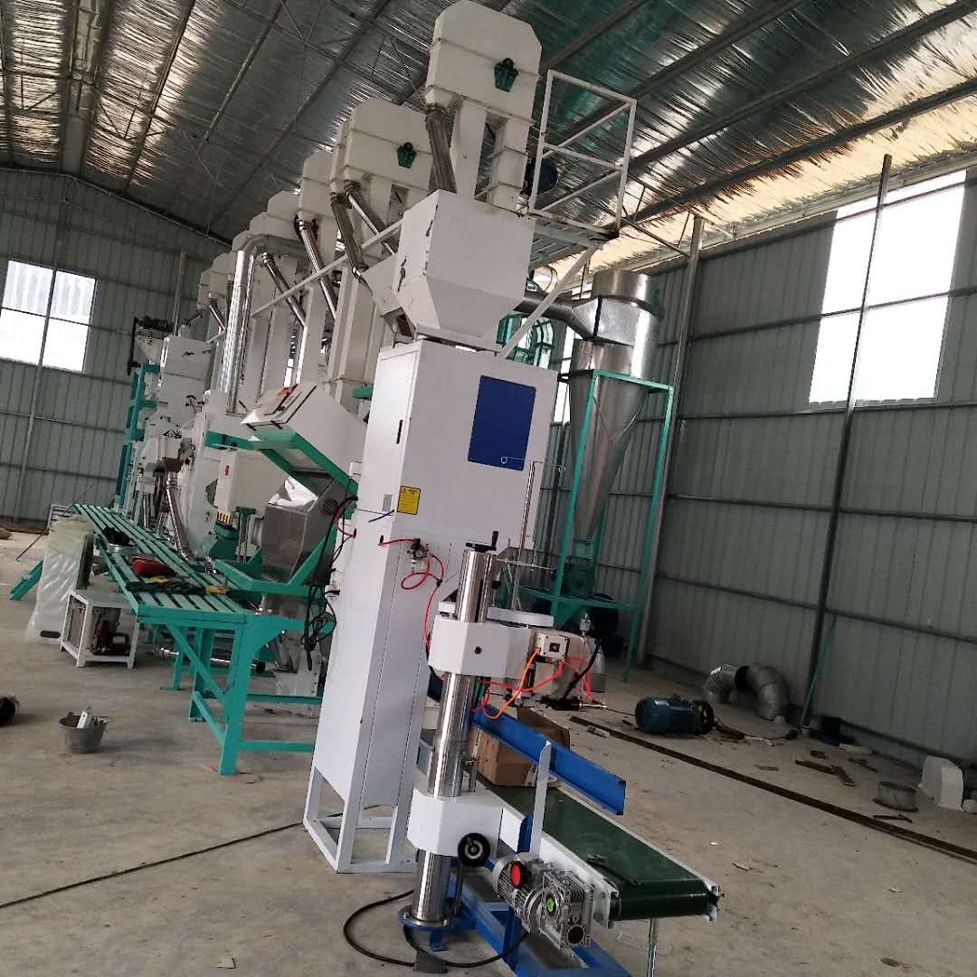 Guangxi 30 tons/day rice processing equipment installation and commissioning site